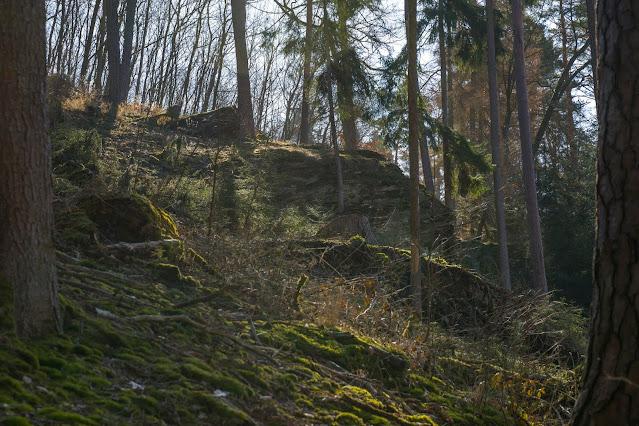 Eschbacher Klippen und Maibacher Schweiz | Wanderung rund um Michelbach im Taunus 23