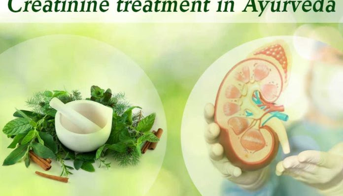 What Makes Creatinine Treatment in Ayurveda an Ideal Solution?