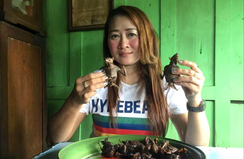 Gadis Makan Daging Kelelawar saat Virus Corona Mewabah (detik.com)