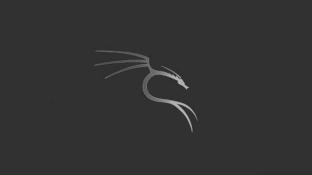 How to set the Static IP and DNS in Kali Linux?