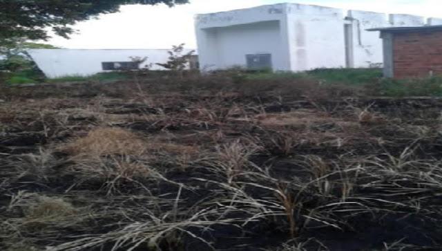 Avanza deforestación e intento de invasión en terrenos de la ULA en El Vigía