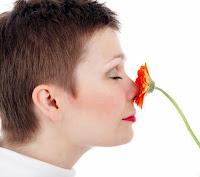 Smell Disorders, Olfactory Problems, Cacosmia, Parosmia, Heterosmia, Fantosmia, Hyposmia, Hyperosmia, Anosmia, Dizosmia