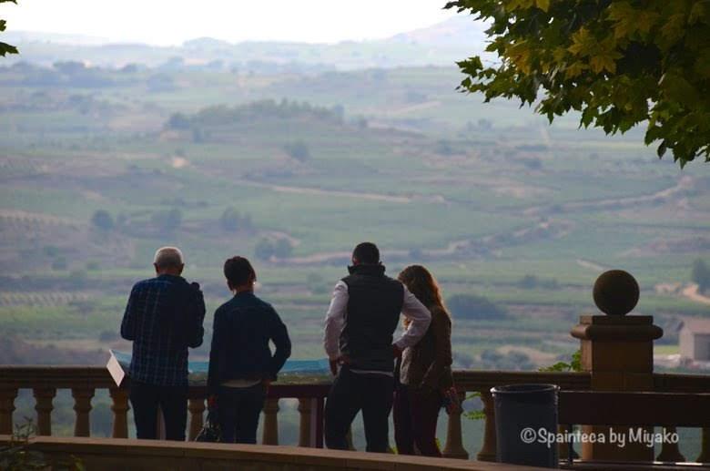 Vineyard's Landscape in Laguardia, Spain リオハのぶどう畑を展望台から見渡す人々