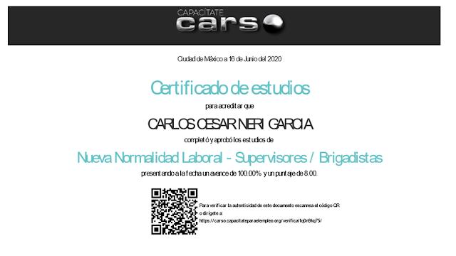 Certificación Nueva Normalidad Laboral  Supervisor Brigadísta