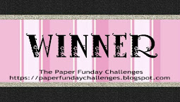 I won at The Paper Funday Challenge!