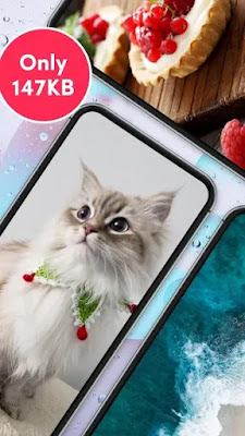 TikTok Wall Picture Free Android app on Apcoid.com
