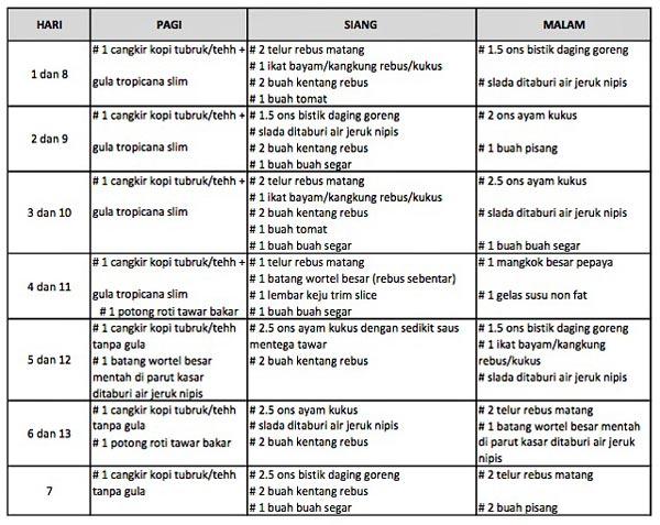 jadwal menu diet mayo selama 13 hari
