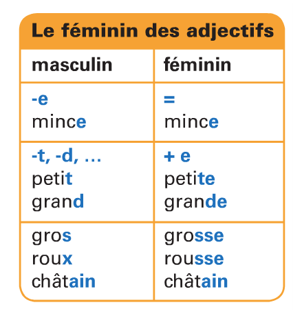 Rodzaj żeński przymiotników - gramatyka 8 - Francuski przy kawie