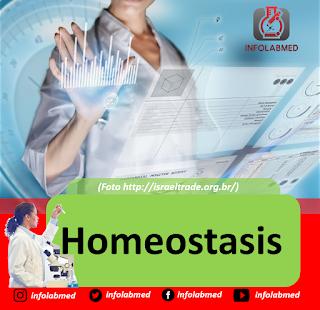 Homeostasis Anatomi Fisiologi Manusia