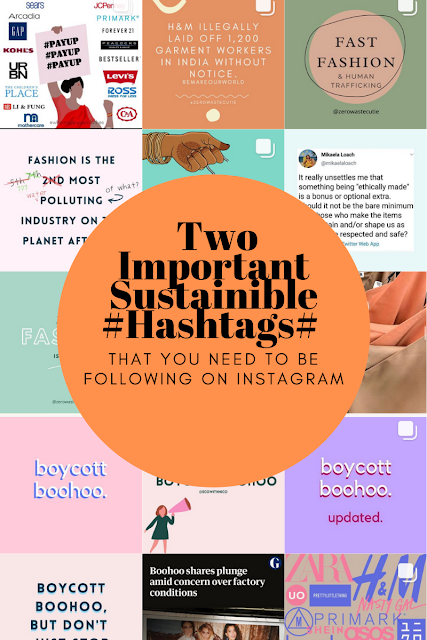 A graphic of important hashtags to follow on Instagram