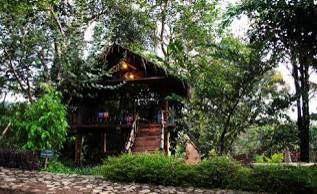 http://www.teluklove.com/2016/11/keindahan-destinasi-wisata-kampung.html
