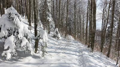 Winterlicher Weg bei der Schmiedenmatt