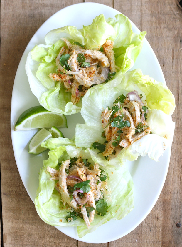 Toasted coconut & chicken lettuce wraps by SeasonWithSpice.com