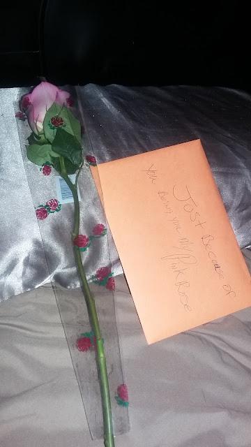surprise pink rose