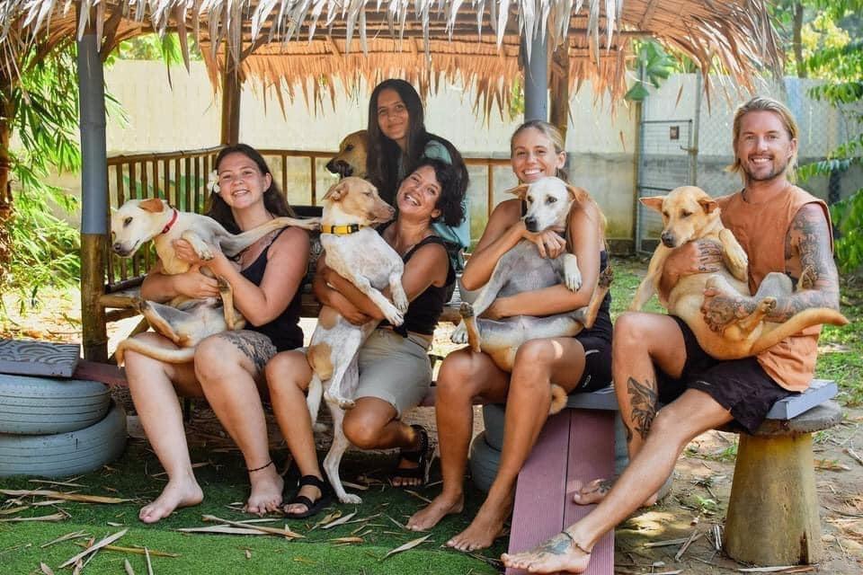 dogsitters, volunteers, animal refuge, Thailand, digital nomads