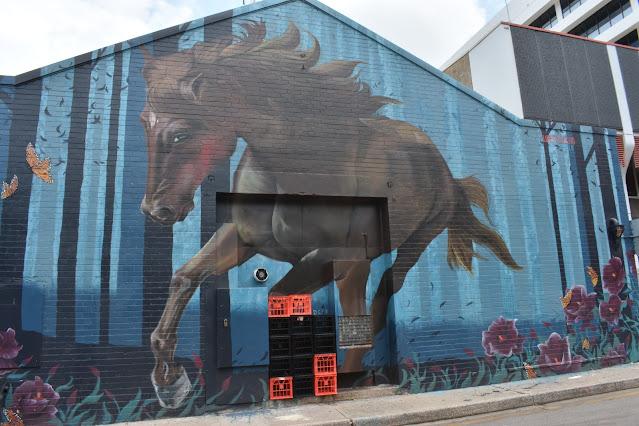 Darwin Street Art | Loretta Lizzio