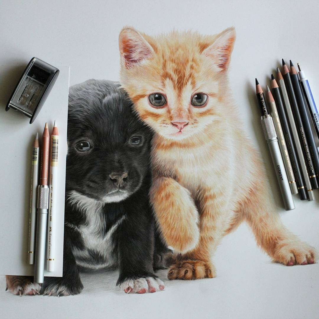 05-Puppie-and-Kitten-Jae-Kyung-Cute-Kittens-and-Puppies-Drawings-www-designstack-co
