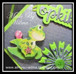 Een close-up van een kikker op een plompeblad. A close-up of a frog on a waterleaf.