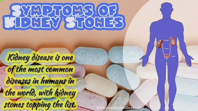 What is a Kidney Stone, and how to treat it?