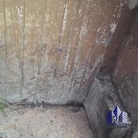 Deterioro del concreto por la acción de la humedad y agentes externos