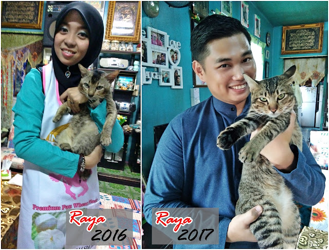 Semoga Pengakhiran Tahun 2017 akan Membawa 1001 Pencapaian Positif di Tahun 2018 - Sofinah Lamudin
