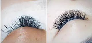 The Lash Bar | Best eyelash extension studio in Ottawa ON