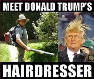 Meet the hairdresser..