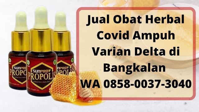 Jual Obat Herbal Covid Ampuh Varian Delta di Bangkalan WA 0858-0037-3040