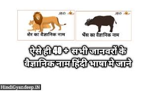 Scientific Name of the animals   जानवरों के वैज्ञानिक नाम की सूची