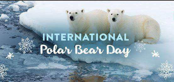 International Polar Bear Day Wishes Unique Image