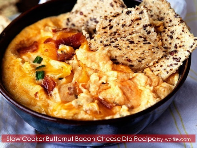 Slow Cooker Butternut Bacon Cheese Dip Recipe
