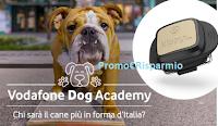 Logo Vinci gratis V-Pet, forniture Schesir per il tuo cane e omaggi