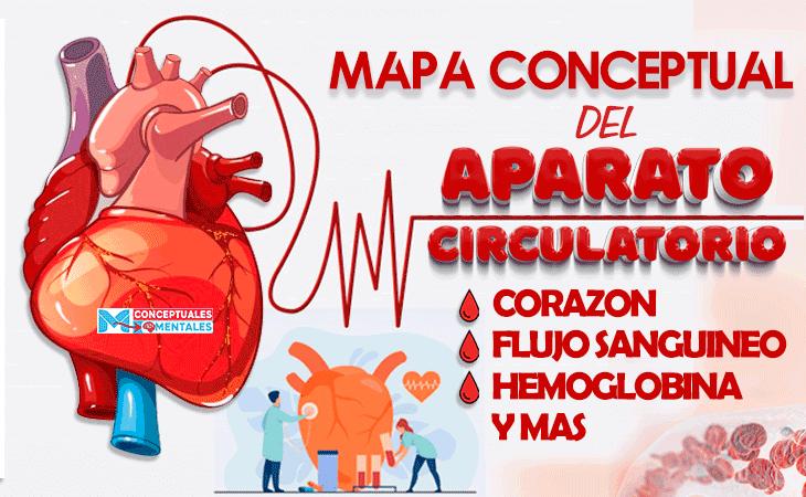 articulo sobre mapas conceptuales sobre el sistema circulatorio