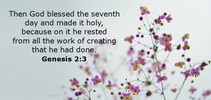 Then God blessed the seventh day and made it holy, because on it he rested from all the work of creating that he had done.