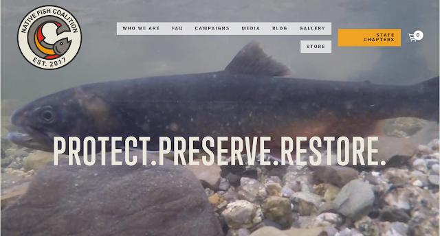 The Native Fish Coalition