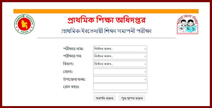 PSC Result 2021 - www.dpe.gov.bd
