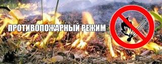 На территории ГО Сухой Лог веден Особый противопожарный режим