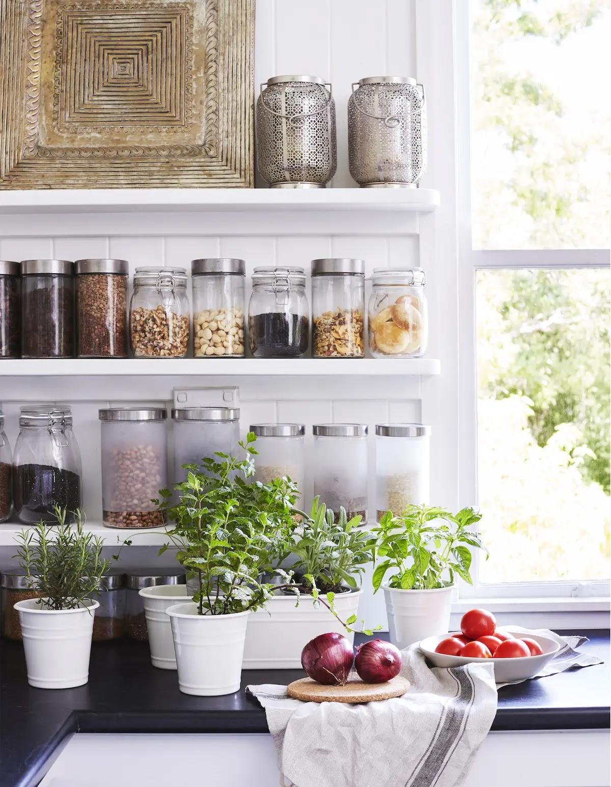 Orden en la despensa: botes herméticos con tapa y plantas aromáticas