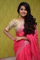 Anupama Parameswaran in Saree ~  Exclusive 002.jpg