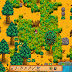 9 Stardew Valley Tips for Beginners