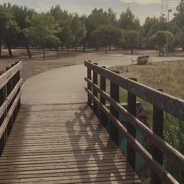 camino puente