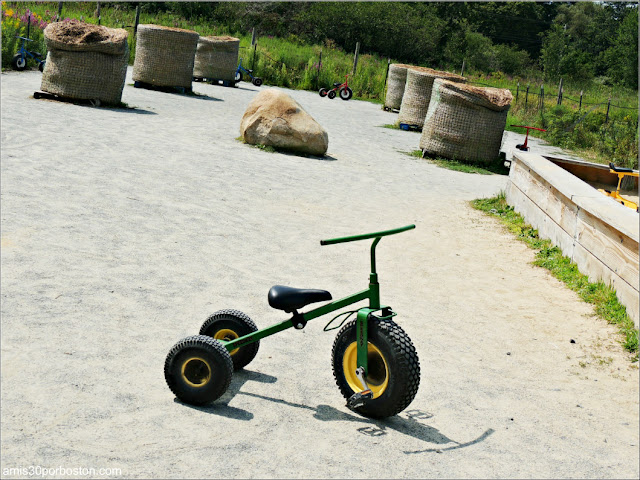 Granjas de Massachusetts: Zona Infantil de la Cider Hill Farm