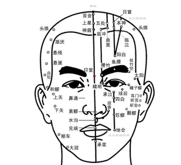 印堂穴位 | 印堂穴痛位置 - 穴道按摩經絡圖解 | Source:zhongyibaike.com