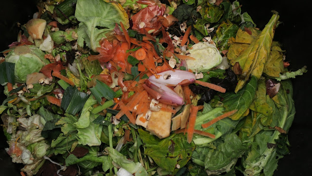 Raw vegetables added to compost bin.
