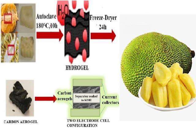 Jackfruit Can Be Used To Charge Your Phone Battery,Learn
