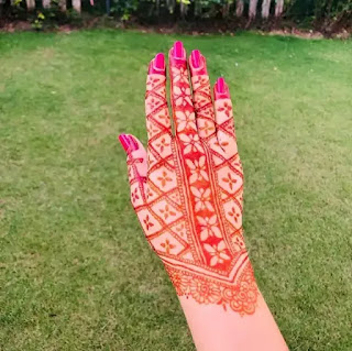 Easy_net_with_small_flowers_mehndi_design