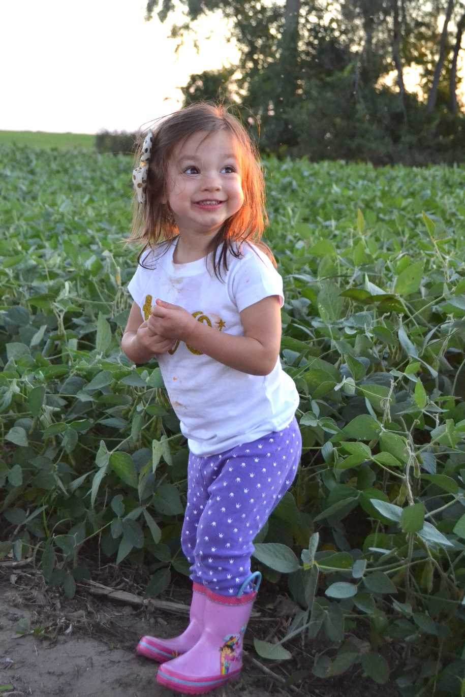 toddler in a soybean field