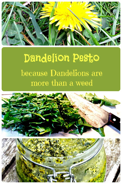 Dandelion Pesto - Because Dandelions are more than just a weed!