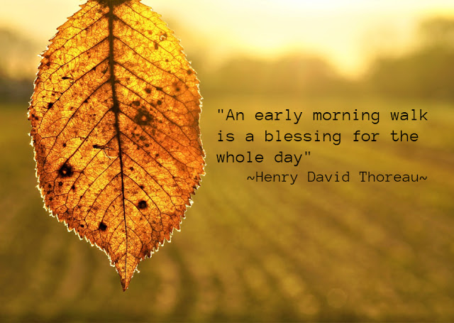 early morning walk quote