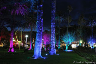 Coloured lights at night, on trees and bushes in Clive Square, Napier. photograph
